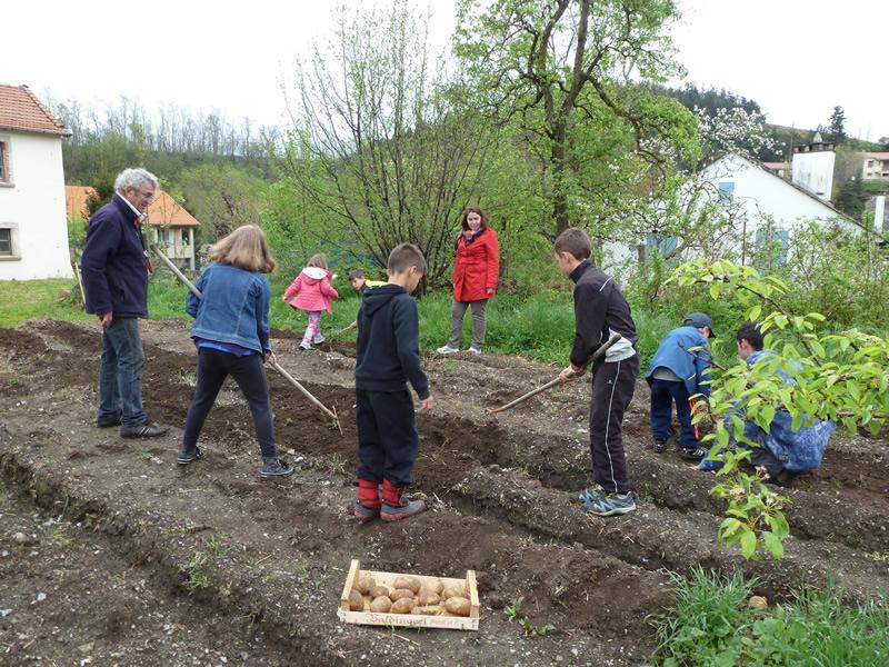 Planter des pomme de terre cheap planter des pommes de terre sous brf with planter des pomme de - Planter pomme de terre en pot ...