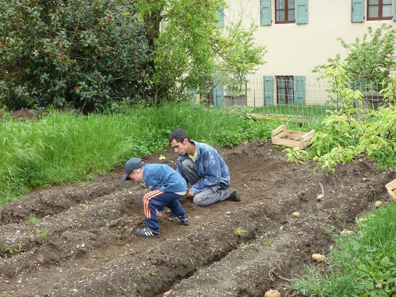 Pour les restos du coeur les jardins en partage - Periode plantation pomme de terre ...
